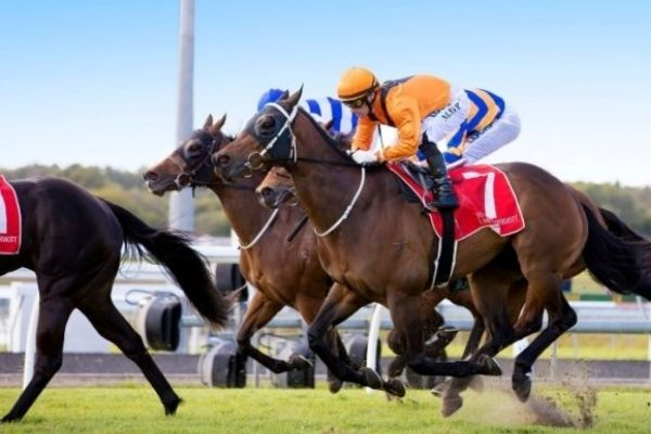 Image - Give Me 5 LPE Caloundra Cup Ladies